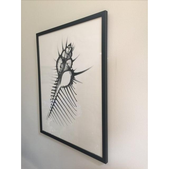 George Green X Ray Print - Image 4 of 5
