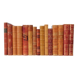 Scandinavian Leather-Bound Books S/15 For Sale
