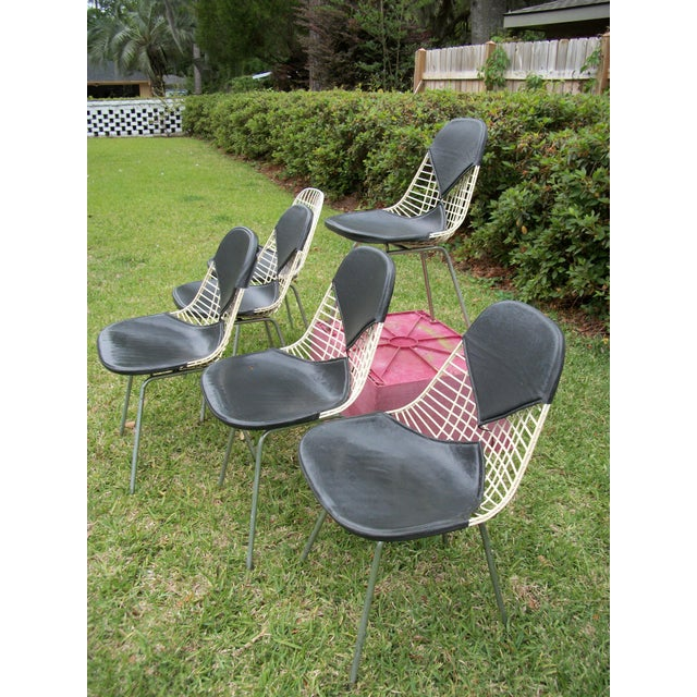 Mid-Century Modern Eames for Herman Miller Bikini Wire Chairs - Set of 6 For Sale In Savannah - Image 6 of 11