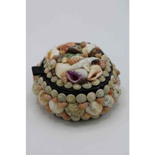 Contemporary Mid 20th Century Vintage Organic Seashell Jewelry Treasure Box For Sale - Image 3 of 12