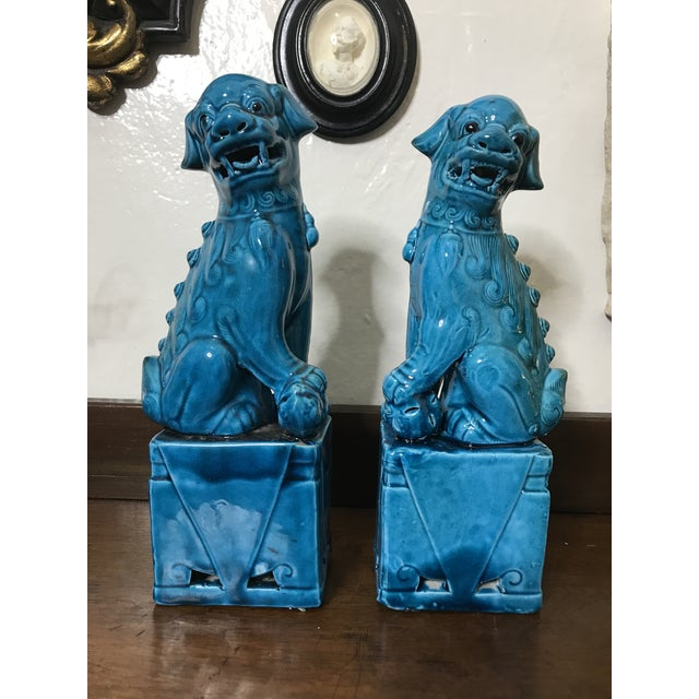 "Turquoise Vintage Chinese Porcelain Turquoise Foo Dogs 10"" - a Pair For Sale - Image 8 of 8"