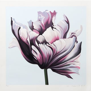 Lowell Blair Nesbitt 'Parrot Tulip III' Serigraph For Sale