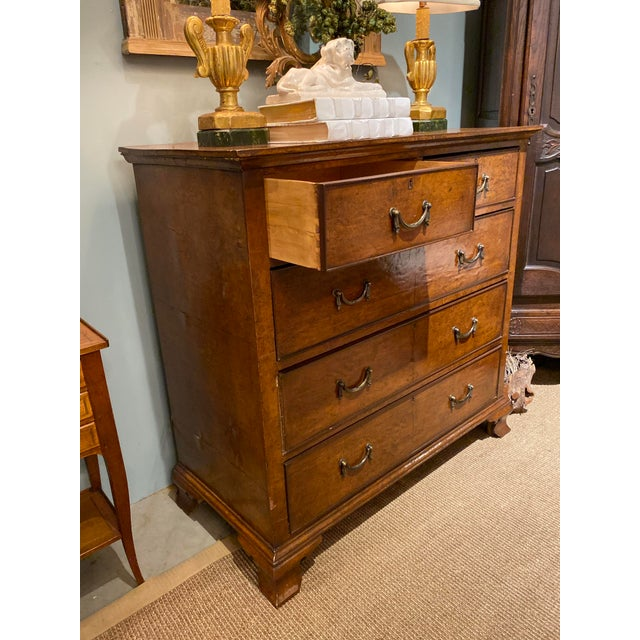 19th Century 19th Century English Walnut Five Drawer Chest For Sale - Image 5 of 12