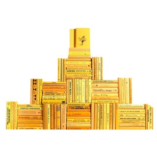 Modern Daffodil Book Wall : Set of One Hundred Decorative Books