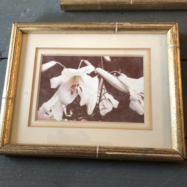 Traditional Gallery Wall Collection-4 Vintage Small Flower Photos in Faux Bamboo Frames - Set of 4 For Sale - Image 3 of 7