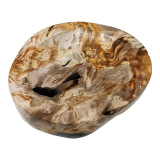 Petrified Wood Bowl / Ashtray / Catchall For Sale