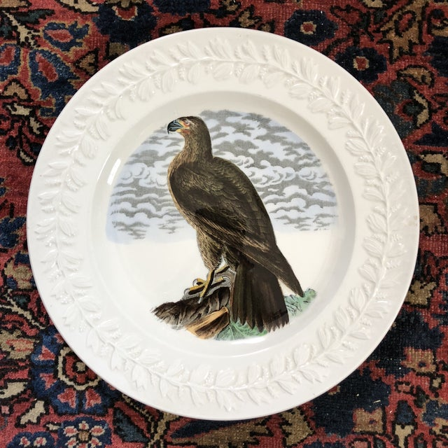 Set of four John James Audubon Birds of America plates by Adams England.