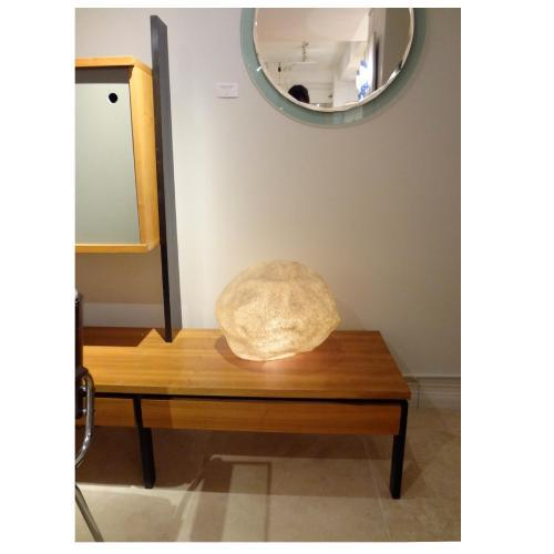 Singleton lit rock featuring a natural shaped body of plastic that is coated in a natualistic covering. The lamp features...