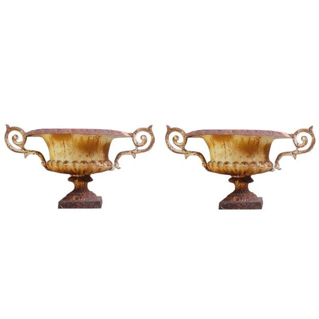 Cast Iron Matching Pair of 19th C French Medici Cast Iron Jardineres With Scroll Arms For Sale - Image 7 of 7