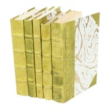 Image of Parchment Collection Light Green Books - Set of 5 For Sale