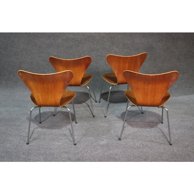 Mid 20th Century Arne Jacobsen for Fritz Hansen Danish Bentwood Chairs - Set of 4 For Sale - Image 5 of 8