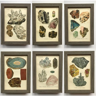 Early 20th Century Antique Mineral Print Collection - Set of 40 Preview