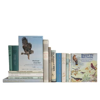 Soft Feathers Birding Book Set, S/15 For Sale
