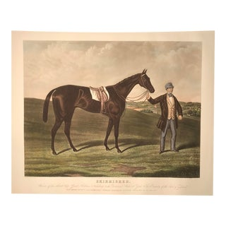 """""""Skirmisher"""" - Hand Colored Engraving For Sale"""