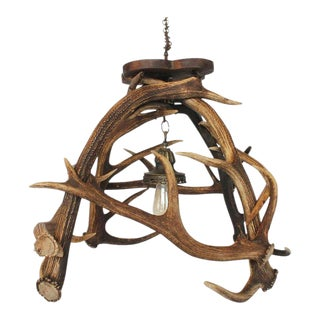 Early 20th Century Stag's Horn Chandelier For Sale