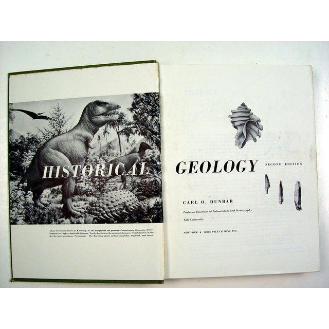 Historical Geology Paleontology - Image 3 of 6