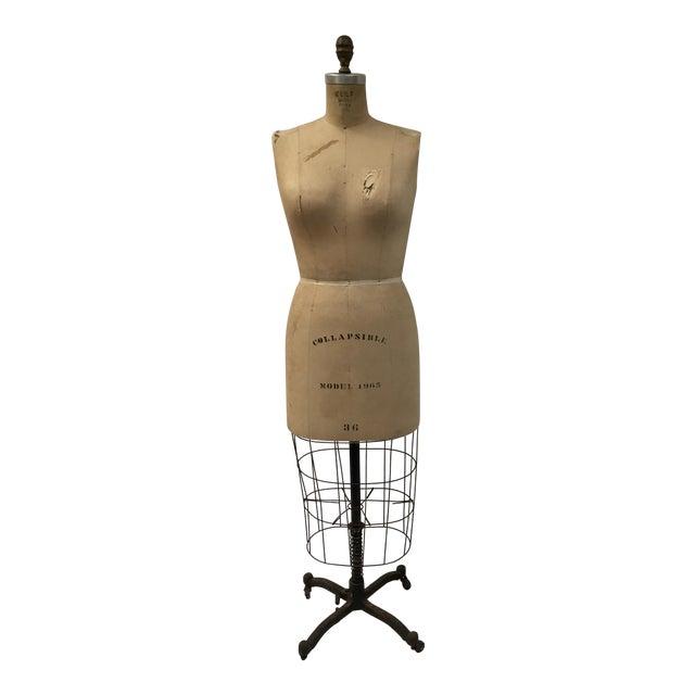 Vintage Wolf Dressmaker's Mannequin For Sale