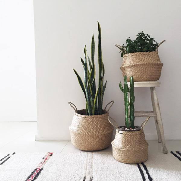 Medium Seagrass Belly Basket For Sale - Image 4 of 5
