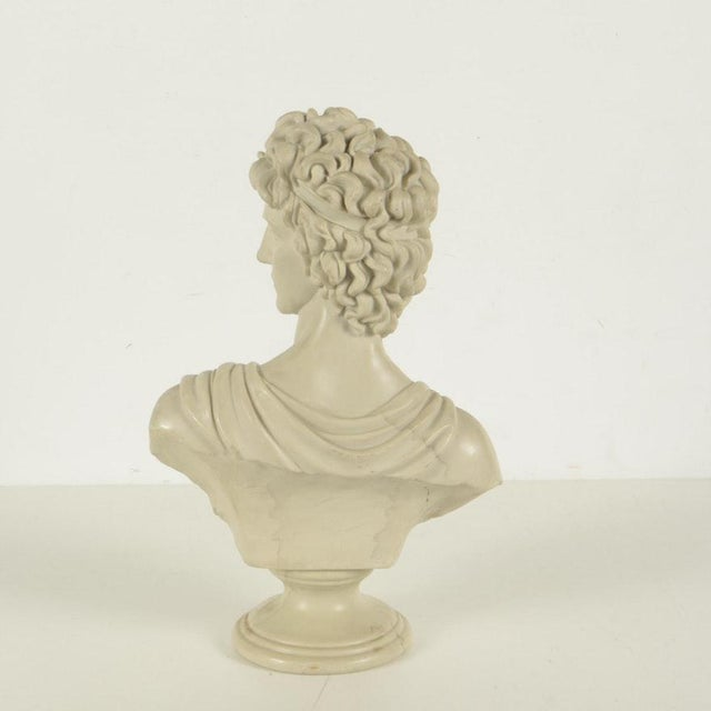 Resin Busts