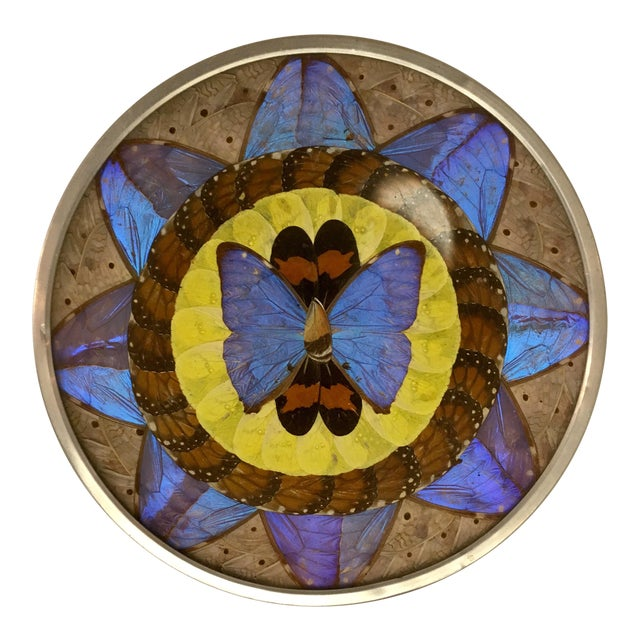 Vintage Butterfly Wing Art For Sale