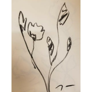 Jose Trujillo Original Flowers Minimalism Charcoal Paper Sketch Drawing For Sale