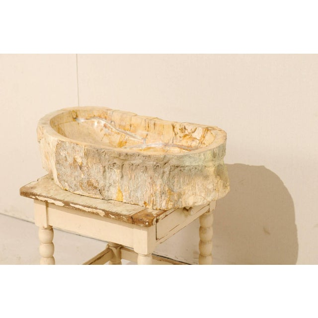 Early 21st Century Organic Modern Petrified Wood Sink For Sale - Image 5 of 8