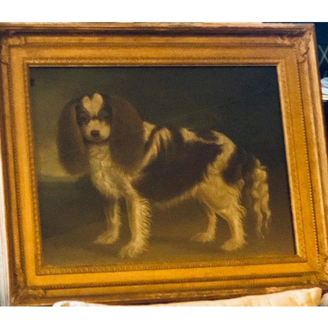 Late 20th Century Portrait of a Cavalier King Charles Spaniel Oil on Canvas Painting For Sale - Image 9 of 11
