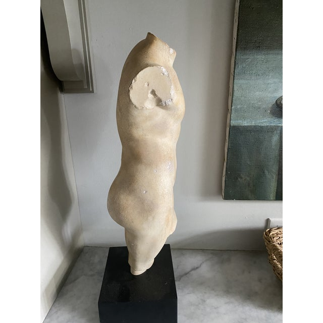 Sculpture on Stand of a Male Body For Sale - Image 4 of 6