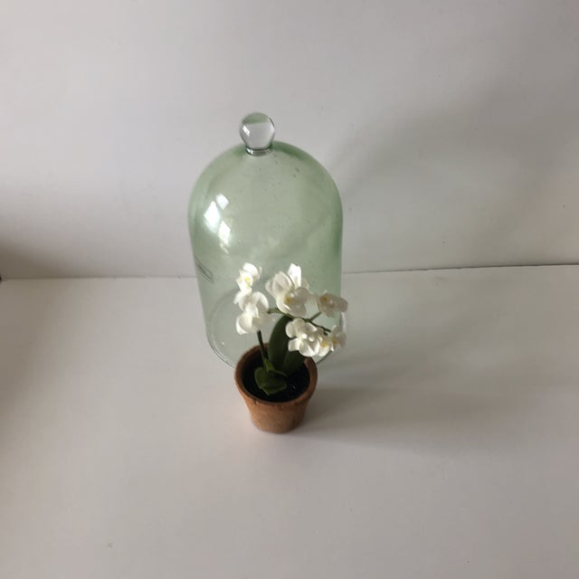 Boho Chic Green Terrarium Dome With Silk White Flowers For Sale - Image 3 of 5