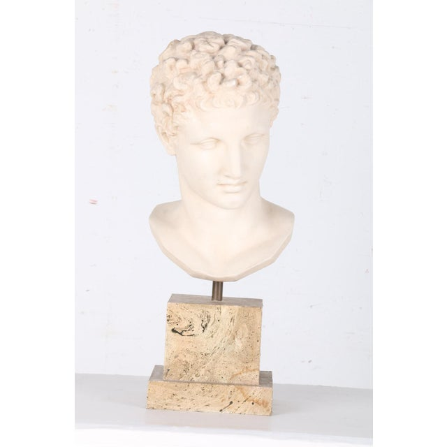 Vintage Plaster Bust After Apollo - Image 2 of 7