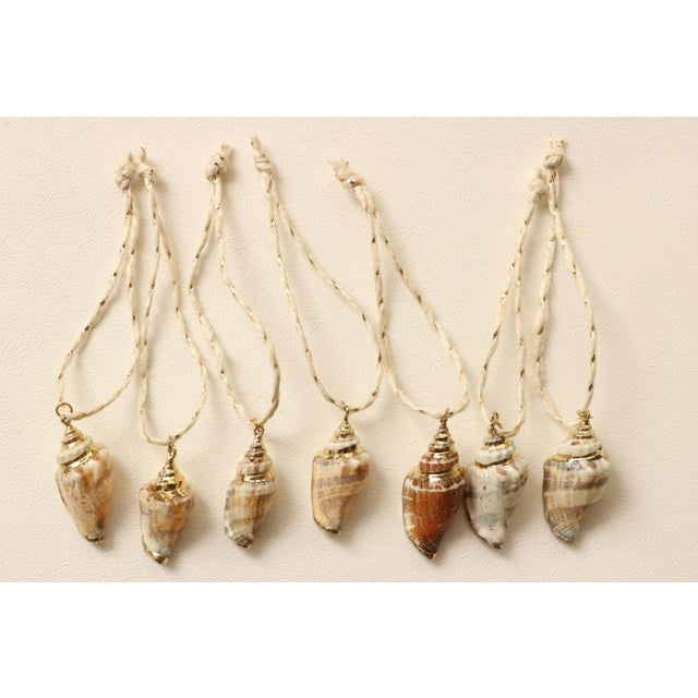 Gold Plated Conch Shell Christmas Ornaments - S/14 - Image 3 of 5