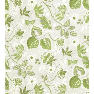 Indienne Hazel Wallpaper by Anna French - Price Per Roll For Sale