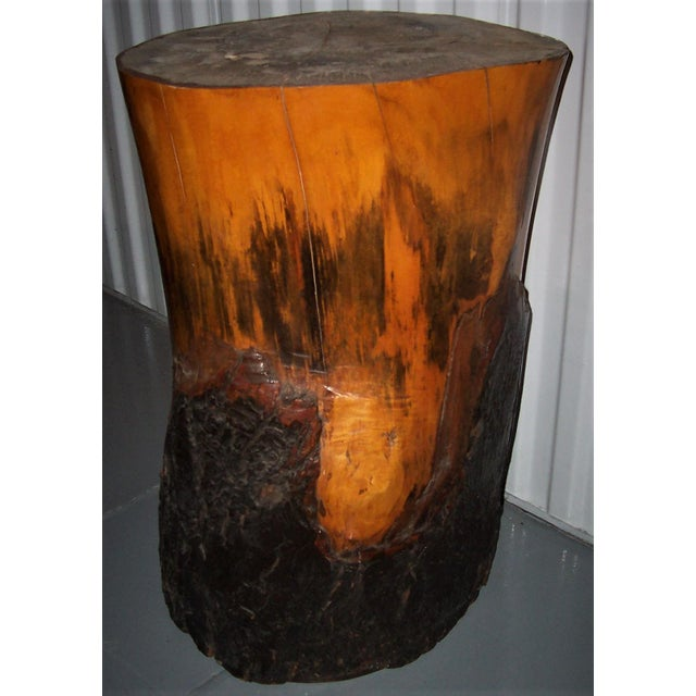 One of kind highly unique hand crafted solid maple wood stand. The wood stand is hand sculpted with original bark in...