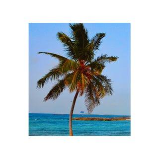 Paradise Island by Rick De La Guardia For Sale