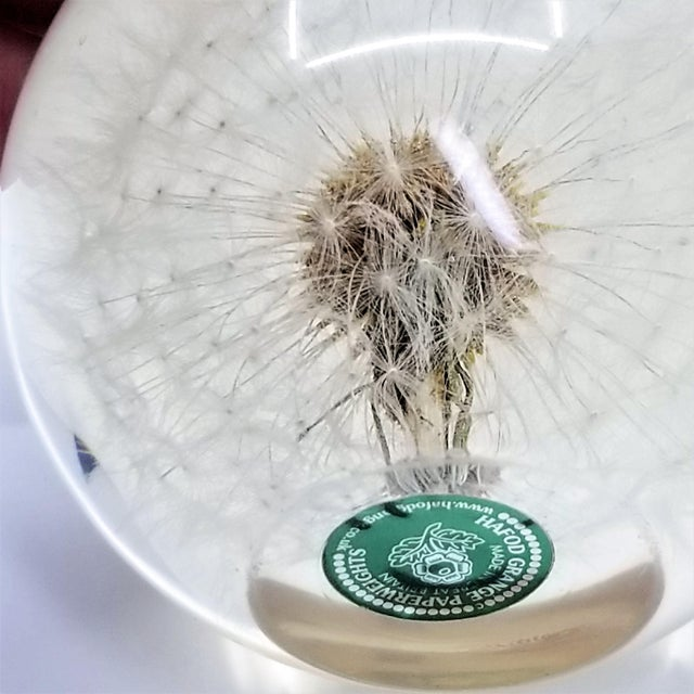 Vintage Lucite Sculpture Paperweight of a Dry Dandelion For Sale - Image 9 of 12