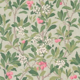 Cole & Son Strawberry Tree Classic Botanical Style Wallpaper - 11 Yard Roll For Sale