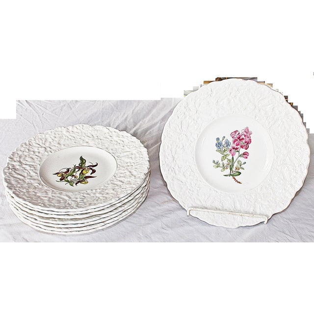 White Royal Couldon Dessert Plates, Set of 8 For Sale - Image 8 of 8