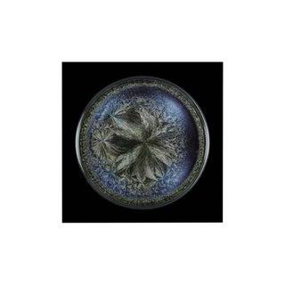 "Seb Janiak ""Morphogenetic Field - Beluga Caviar (Medium)"", Photograph For Sale"