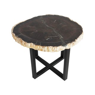 Petrified Wood Slice Side Table For Sale