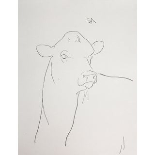 "Sarah Myers ""Head of a Cow"" Minimalist Inspired Charcoal Drawing For Sale"