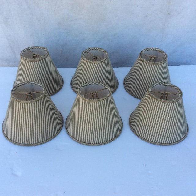 Tan Custom Chandelier Bulb Shades - Set of 6 For Sale - Image 8 of 8