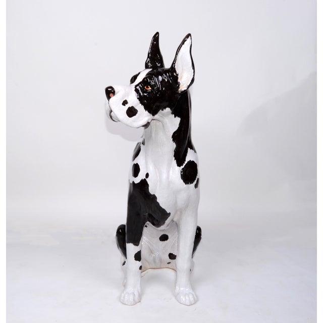 Italian Ceramic Life Size Great Dane Sculpture For Sale - Image 10 of 12