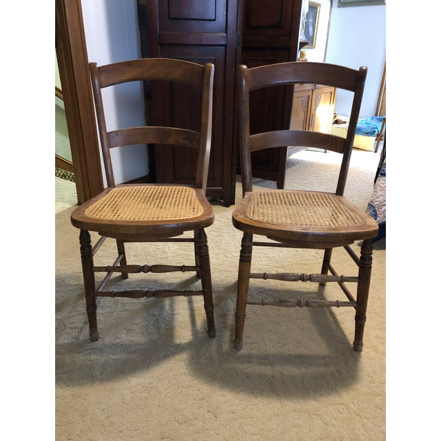 """Late 19th Century Kuchin Caned Side Chairs """"Little Cow"""" - A Pair For Sale - Image 5 of 6"""