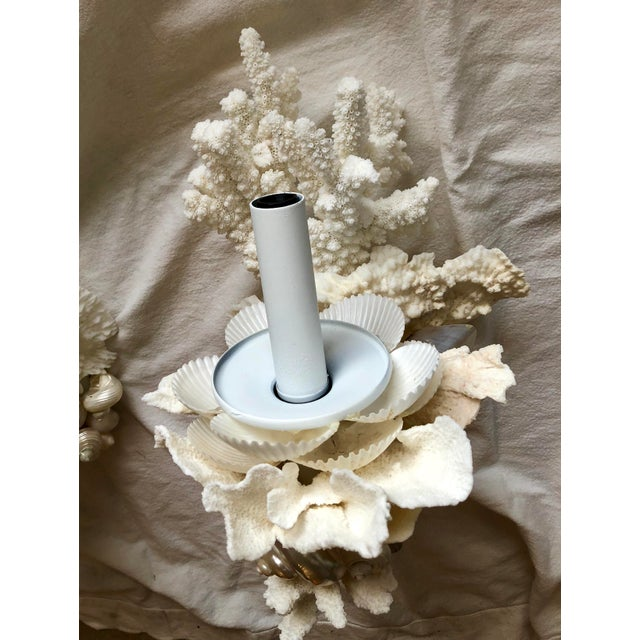 Organic Modern Christa's South Seashells One-Light Coral Sconces - a Pair For Sale - Image 9 of 12