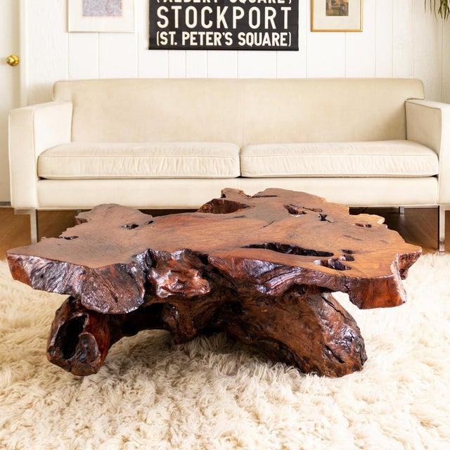 Burl Wood Coffee Table Live Edge Redwood Slab Chairish