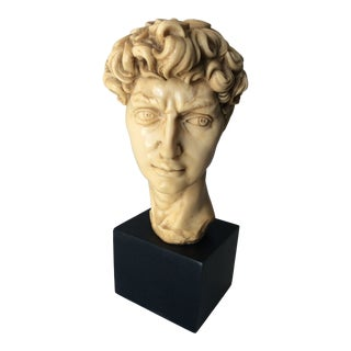 Bust of David Sculpture For Sale