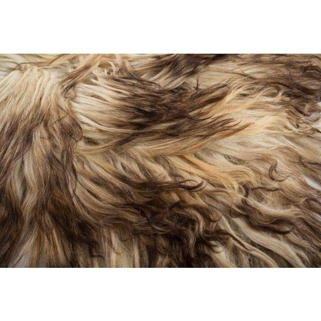 """Contemporary Hand-Tanned Sheepskin Pelt Rug - 2'4""""x4'0"""" For Sale - Image 4 of 6"""