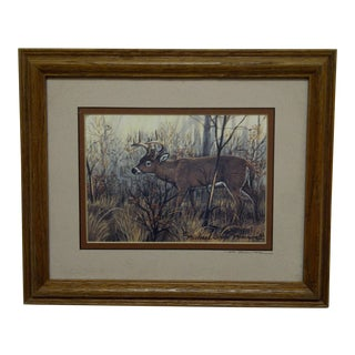 "Michael Glenn Monroe ""Whitetail Buck"" Framed Animal Print For Sale"