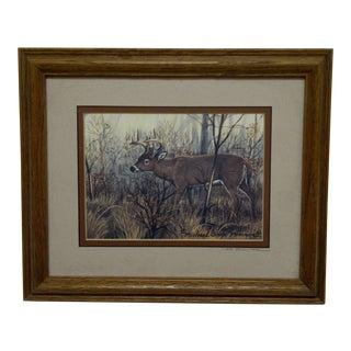 """Michael Glenn Monroe """"Whitetail Buck"""" Framed Animal Print"""