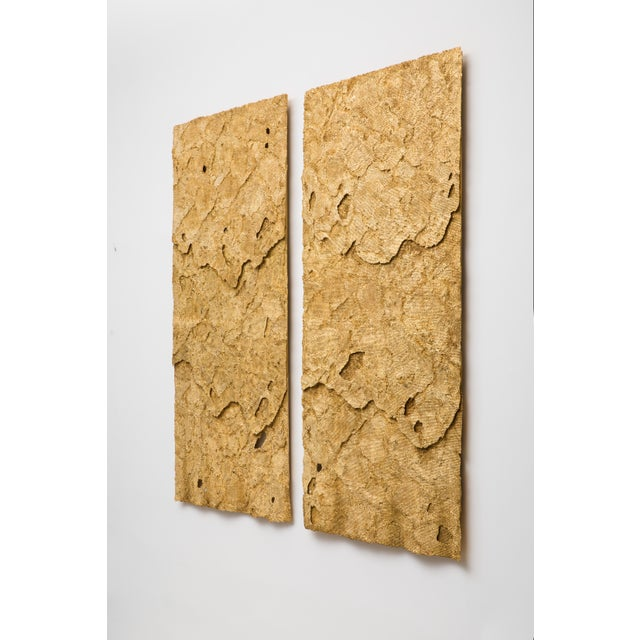 Dossel Diptych, a large-scale wall hanging, is composed of two panels of layered honeycomb cast in Jesmonite, which have...
